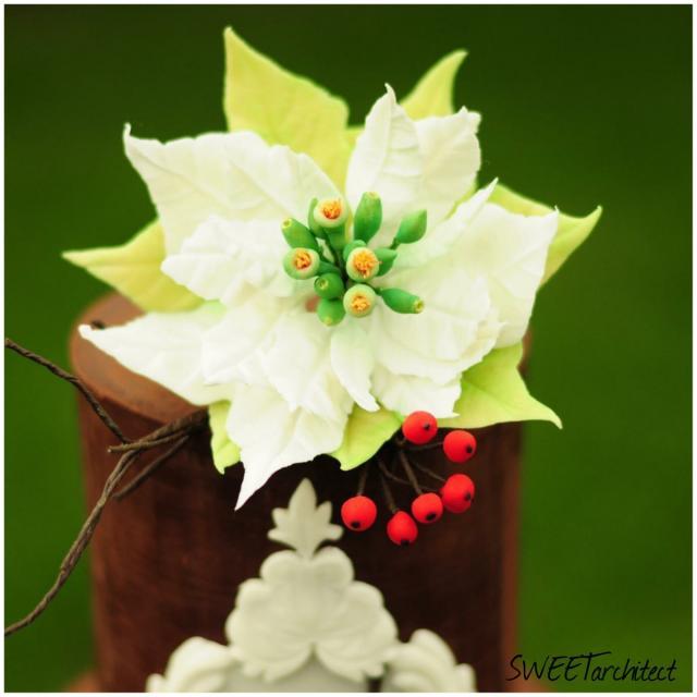 Vianočná ruža a hloh 6ce4a496e11