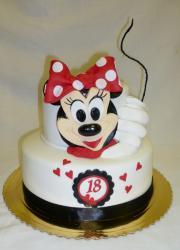 Torta Narodeninová 18