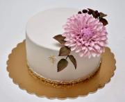Torta K birmovke