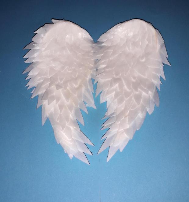 Krídla z jedlého papiera 13