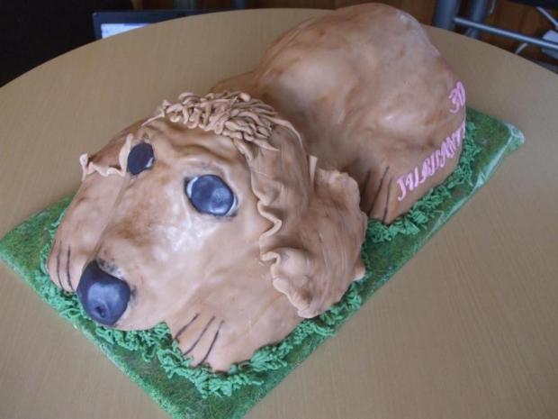 postup na 3D psa 9