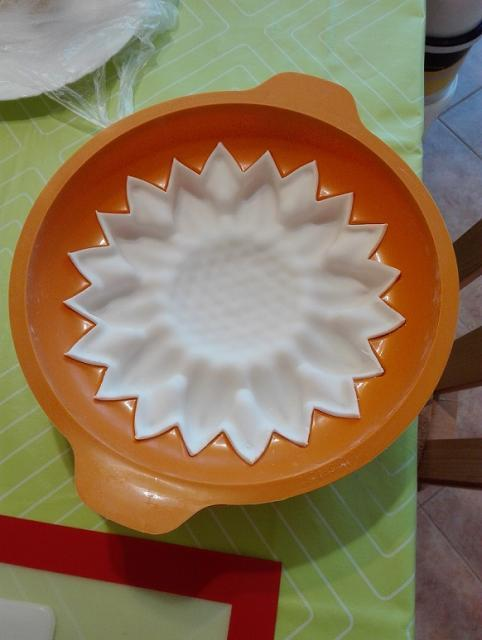 Využitie pudrového spreja - slnečnica 6
