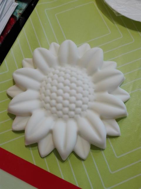 Využitie pudrového spreja - slnečnica 7