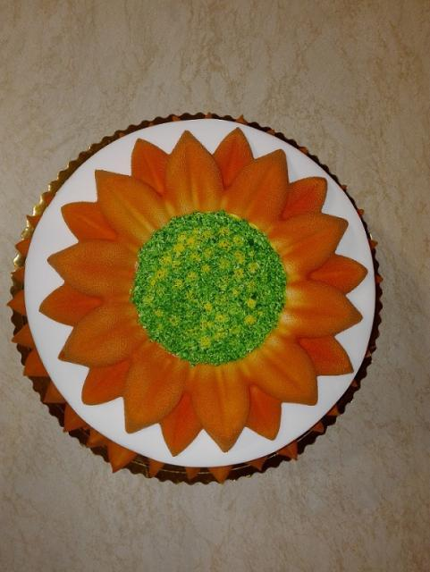 Využitie pudrového spreja - slnečnica 11