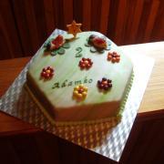 Torta Lienkovo pre Adamka 2