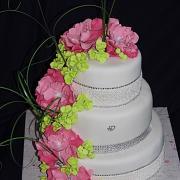 Torta pestrá svadobná...