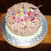 Torta hniezdo