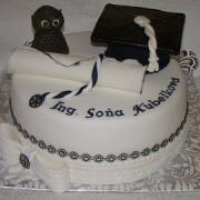 Torta Na promocie