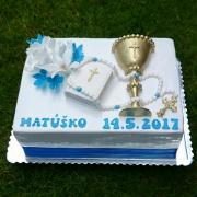 Torta Tortička na PSP 4