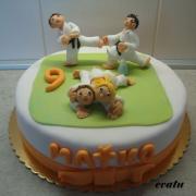 Torta Karate
