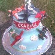 Torta pre vnuka