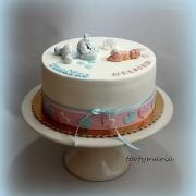 Torta krstinková pre dvoch na želanie