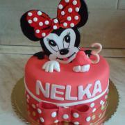 Torta pre dievčatko