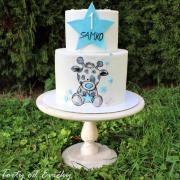 Torta Maľovaná tortička