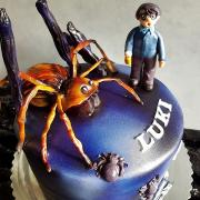 Torta Harry Potter a pavúk Aragog