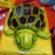 Torta Pre moju malú korytnačku :-)