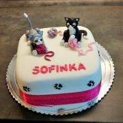 Torta Torta s mačičkami...