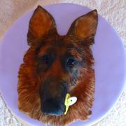 Torta hlava vlčiaka s cumlíkom