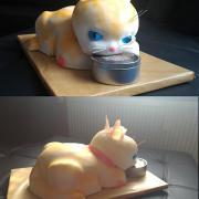 Torta Kocúr