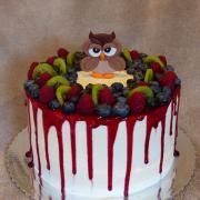 Torta ovocná so sovou