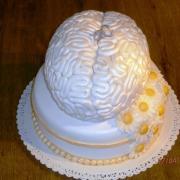 Torta Mozog