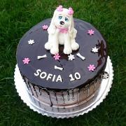 Torta Čokoladová tortička so psikom
