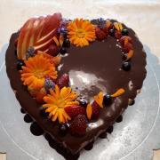 Torta coko
