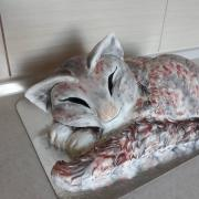 Torta macka