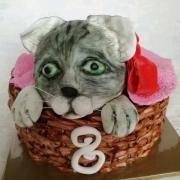 Torta Mačička v košíku
