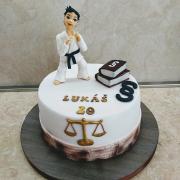 Torta pre šikovného džudistu a buduceho právnika