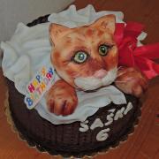 Torta cica