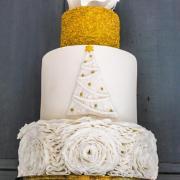 Torta Zimná v zimnom čísle :)