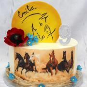 Torta Divé kone