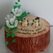 Torta veselá svadobná darovacia