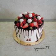 Torta Ovocnickova