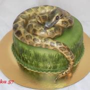 Torta žeby anakonda?