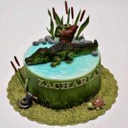 Torta Krokodýl