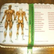 Torta Ľudské telo