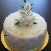 Torta meninovo-narodeninová 1
