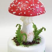 Torta Muchotrávka