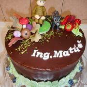 Torta k promocii lesník