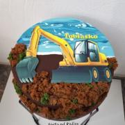 Torta Bager pre Tobiaska