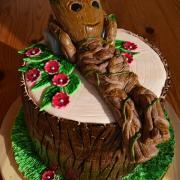 Torta Groot