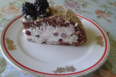 Tvarohovo ríbezľová tortička  - recept