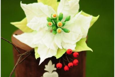 Vianočná ruža a hloh - foto postup