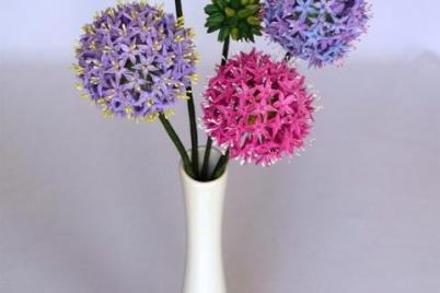 Allium,,  kvitnuci cesnak,, - foto postup