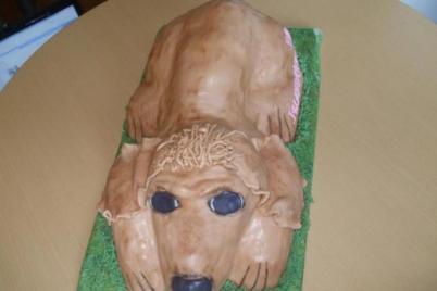 postup na 3D psa - foto postup